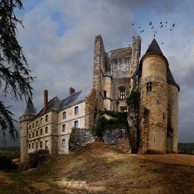 Le château La Rochefoucauld. par christianb