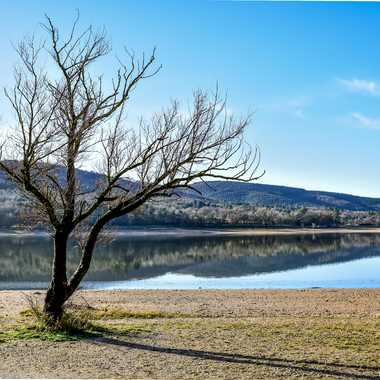 Lac en Hiver par Buissem