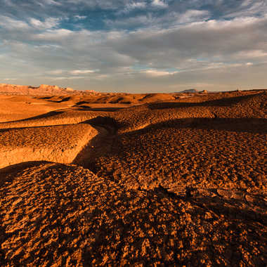 Langues de sable, Las Bardenas par Colybri