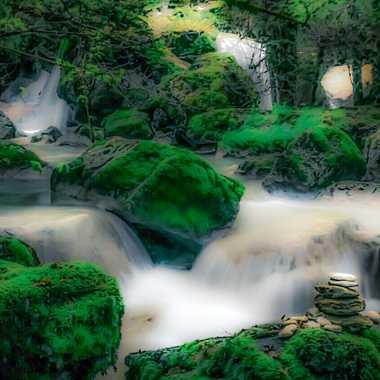 Petit coin zen  par brj01