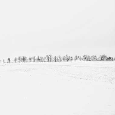 Rempart dans le blanc. par FloRd