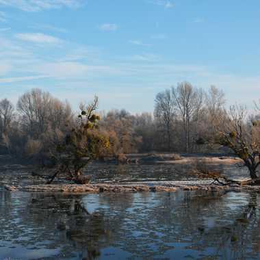 La Loire charrie des glaçons par mamichat