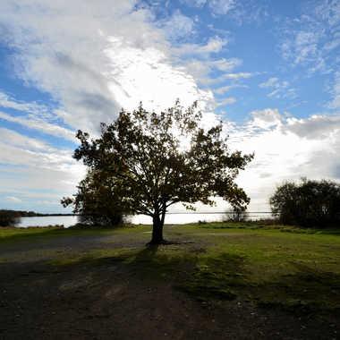 Seul au bord du lac par clero