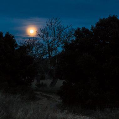 Lever de Lune en Provence par Jeppesen