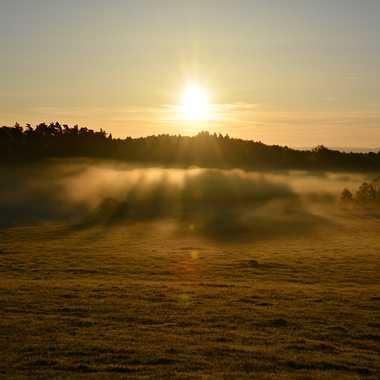 Brumes matinales par mamichat