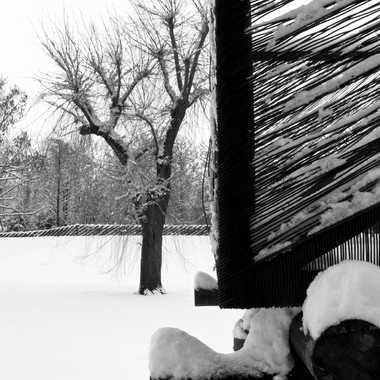 -5° : parc désert par Lolo Zikgyver