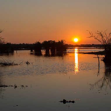 Levé du jour sur le marais par patrick69220