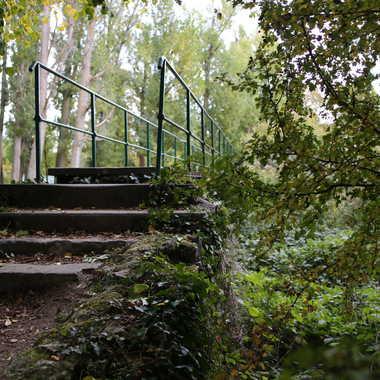pont au dessus de la Morges par Faugere