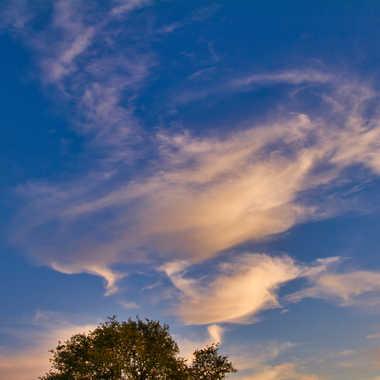 Un petit nuage ... par Jerome Rabille