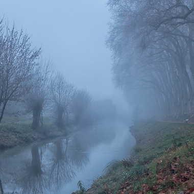Canal de Thoissey par patrick69220