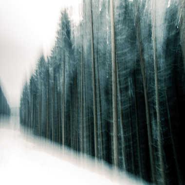 Un chemin forestier neigeux par Lolo Zikgyver