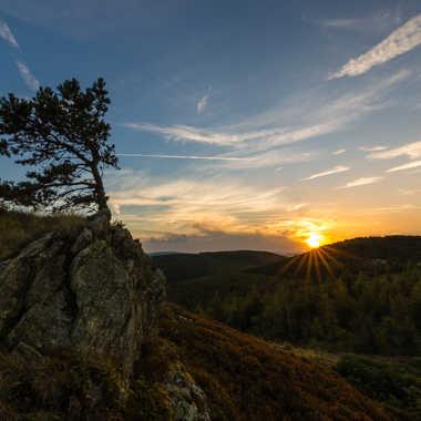 Pousser sur la roche par Dav.sv