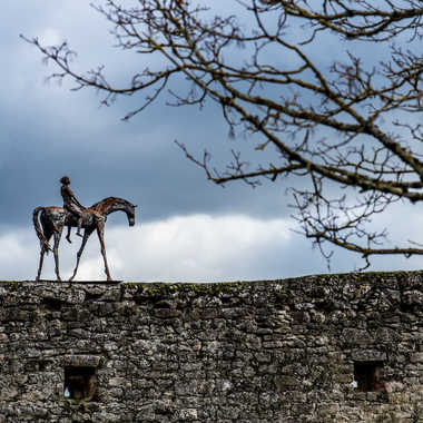 Cavalier des Murailles (2) par Buissem