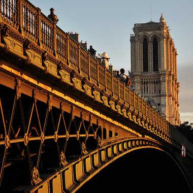 Pont d'Arcole par Nimo