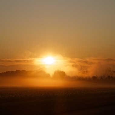 Brume matinale 2 par Jerome Rabille
