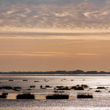 Baie de Somme par Fantine