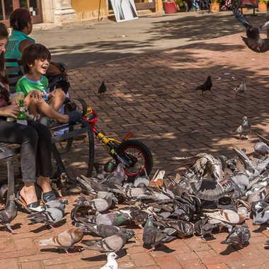 Enfant aux oiseaux par Basile59