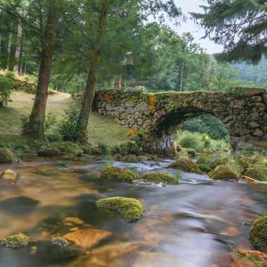 Le petit pont par Adellephotos