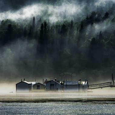 Dans le brouillard par sined2009