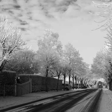 sous la neige 01 par flavien37