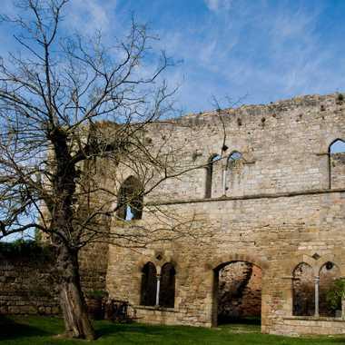 chateau Bruniquel par ROGER46