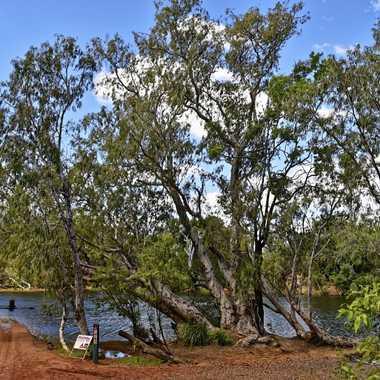Paysage du Lakefield National Park par rmgelpi