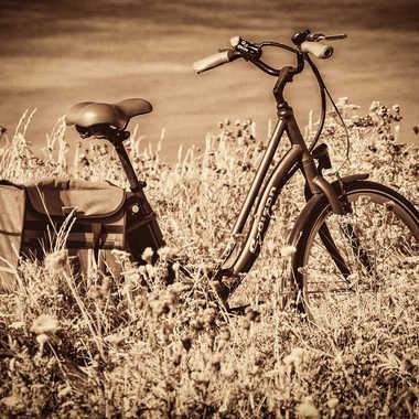 en ballade ...moi pas le vélo  par bubu91