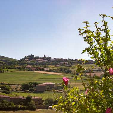 Oingt village du Beaujolais par patrick69220