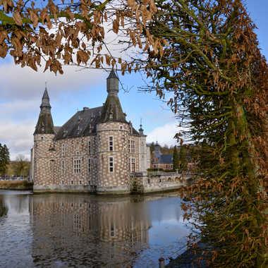 Chateau de Jehay. par bleu