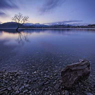 Edge of Lake Wanaka par AlexM