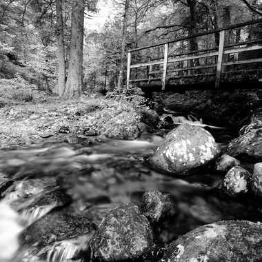 laisser couler de l'eau sous le pont par glookoom