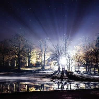 Illumination forestière par Ggpeintre