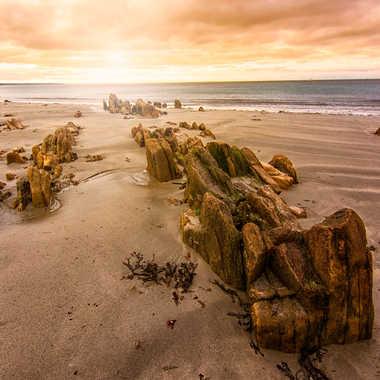 Vers l'océan par Jeremy_7517