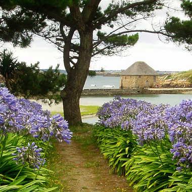 Bréhat, le moulin à marée par Eric_1106