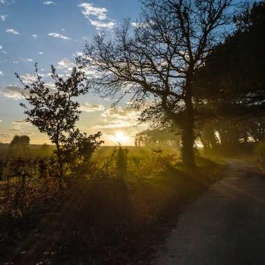 Chemin vers le couchant par Dav.sv