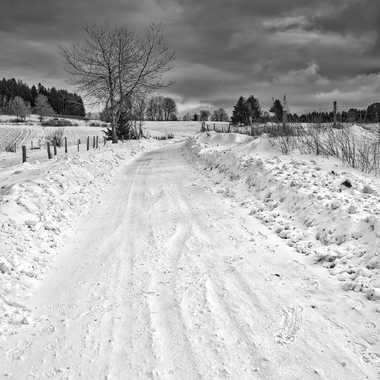 Sur le chemin enneigé. par FloRd