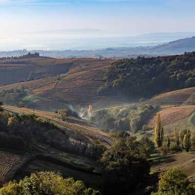 Panorama en Beaujolais par patrick69220