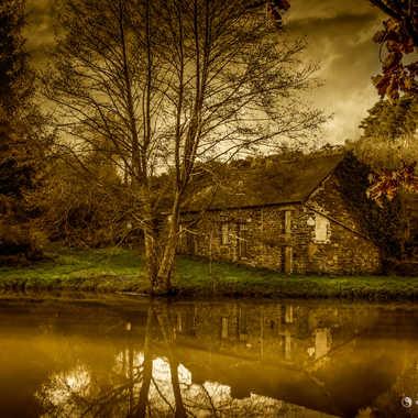 Paysage d'automne par Cirebac