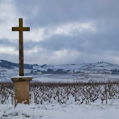 Pays beaujolais sous la neige par patrick69220