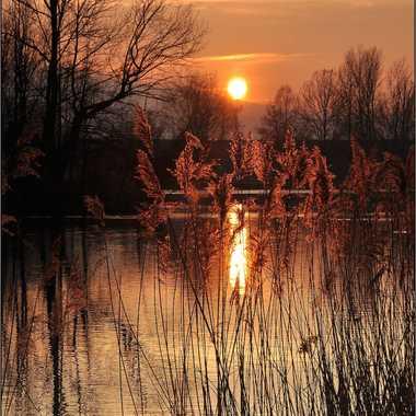 début de soirée sur l'étang par DEDE_du_74
