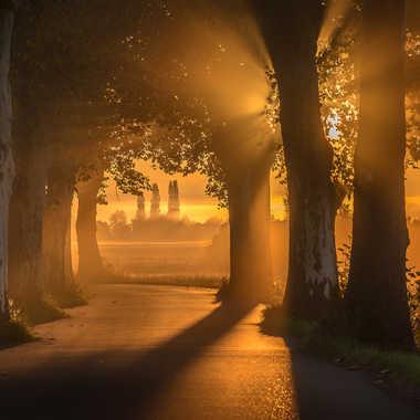 Un matin lumineux par MG67