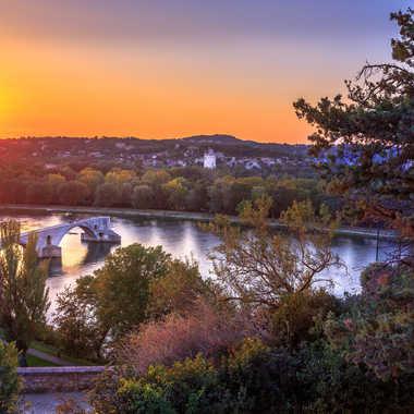 Pont d'Avignon par Jose Fajardo