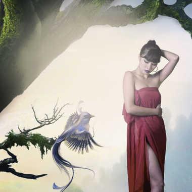 Fantasy Forest par MASU