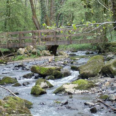 Paisible rivière. par DEL86