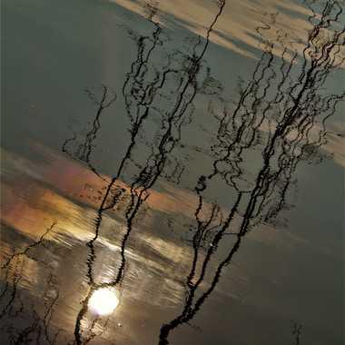 Lueur d'espoir  par Luciephotographie