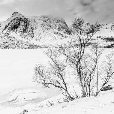 Lac gelé par Farim