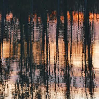 sombres reflets par ANNIC