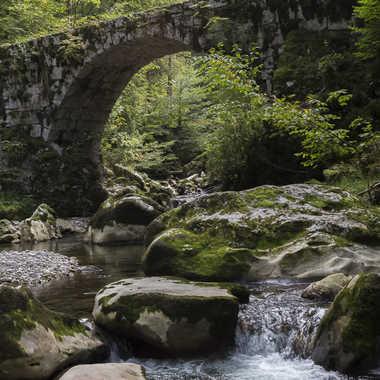 Le pont de la tannerie par patrick69220