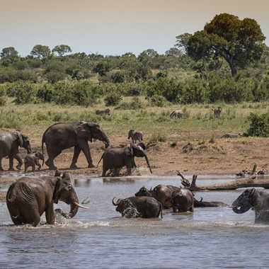 Scène africaine au point d'eau par patrick69220