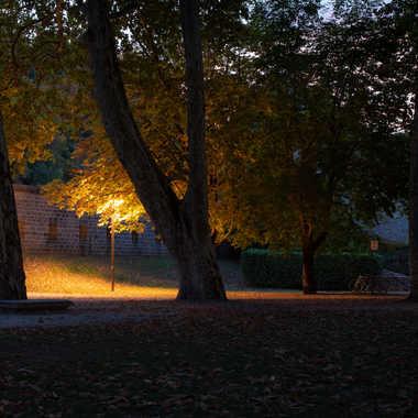 Lumière tamisée par bobox25